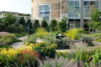 Backyard Garden Ideas and Commercial Landscaping Services Near Me IMG
