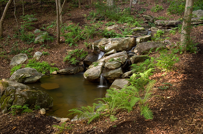 backyard-landscaping-with-rocks-and-garden-plants