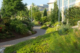 commercial-landscaping-stones-example