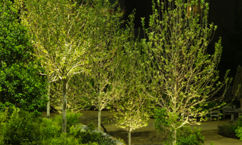 professional backyard landscaping services near me - Garden Streams and Waterfalls IMG