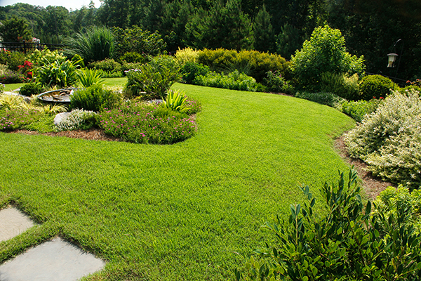 Residential Landscaping Services Near Me - New Lawn Installation IMG