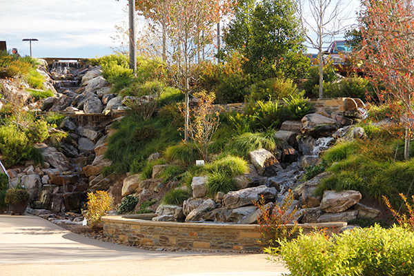 outdoor landscaping companies near me - IMG 5237