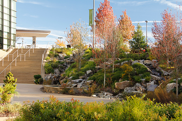 residential landscaping design companies near me - IMG 5247