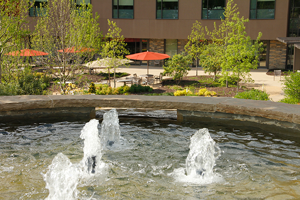 water features and landscaping near me - IMG_8238