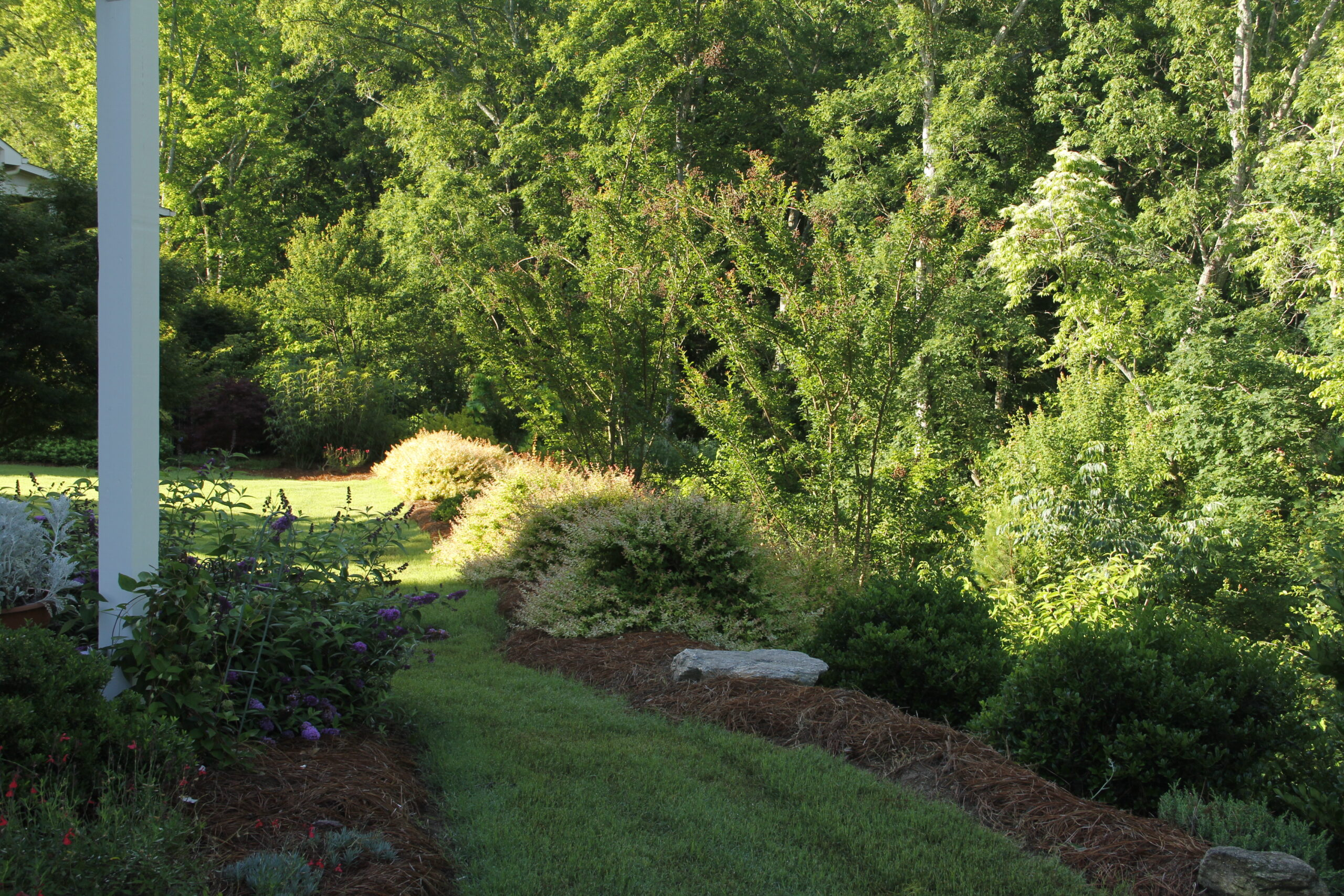landscaping companies near me - Backyard Landscaping After IMG