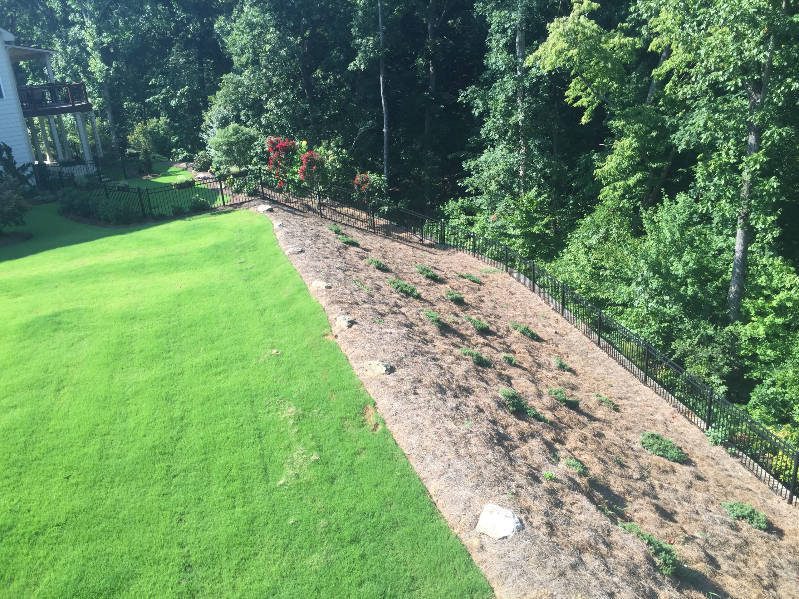 landscaping maintenance company - Backyard Landscaping Before IMG