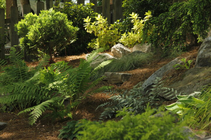 outdoor landscaping near me - landscaping services IMG