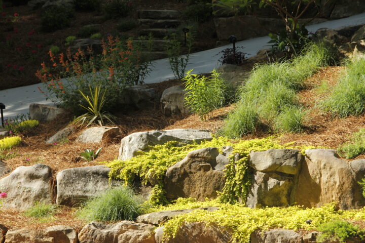 landscaping design companies near me - water features IMG