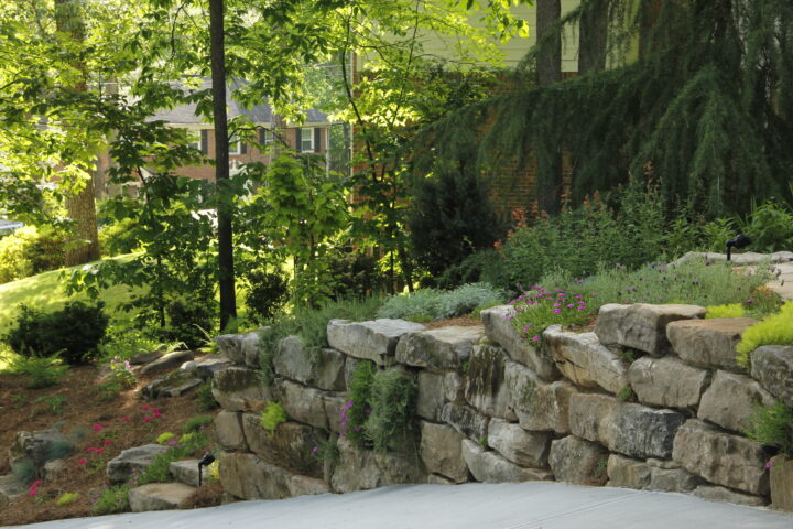 landscape design company near me - residential landscaping IMG