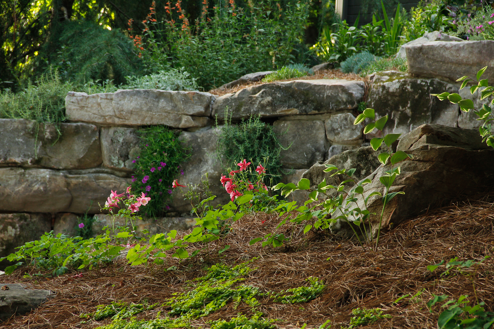 landscape services near me - landscaping stones IMG