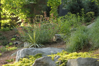 local landscape companies near me - garden streams and waterfalls IMG