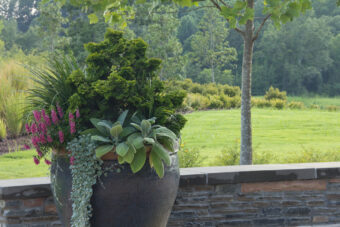 Local Landscape Gardeners Near Me - Outdoor Christmas Tree Potted Garden Landscaping IMG