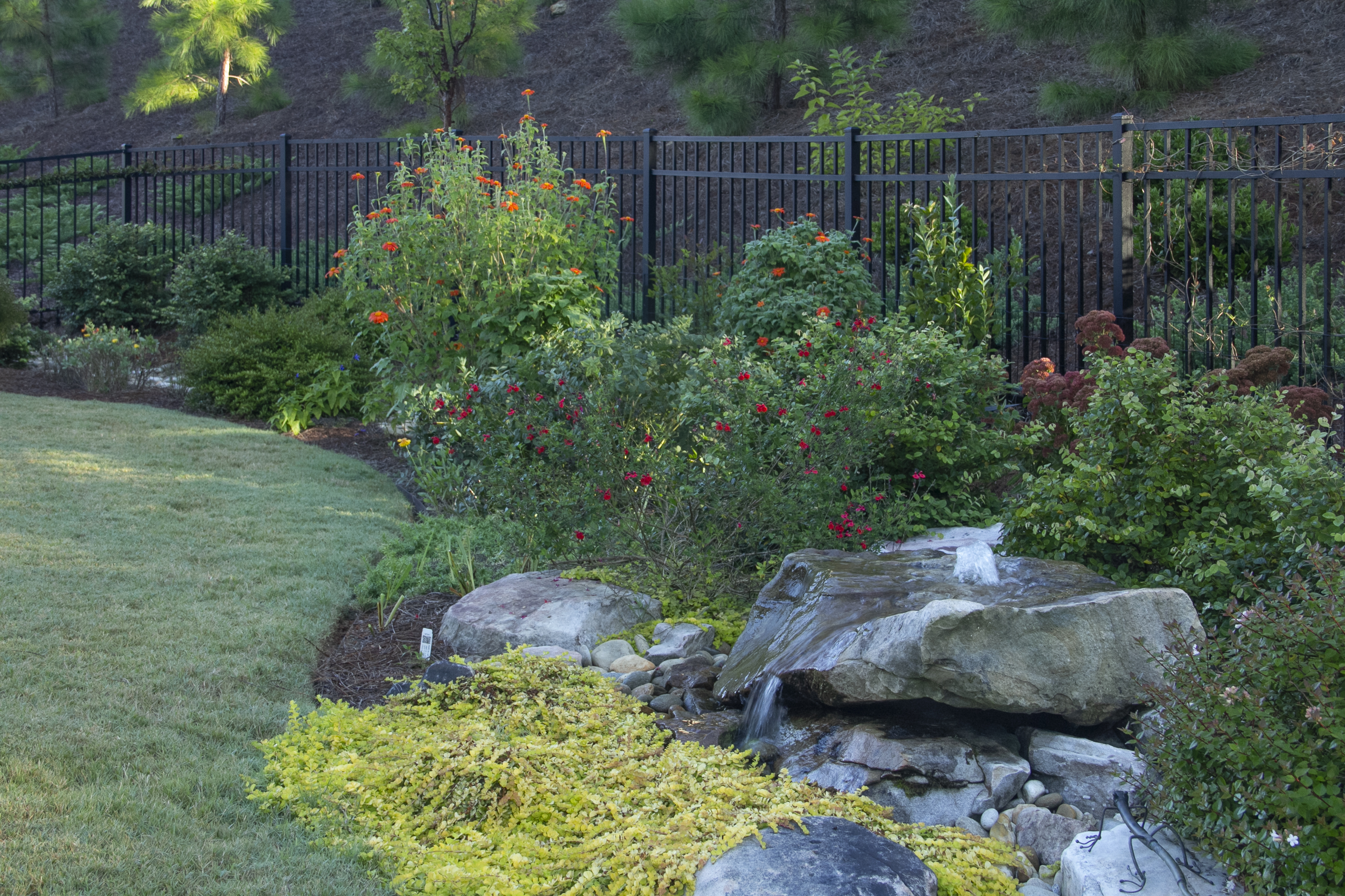 Top local Residential landscape designers near me - Backyard Landscaping Ideas IMG 8775