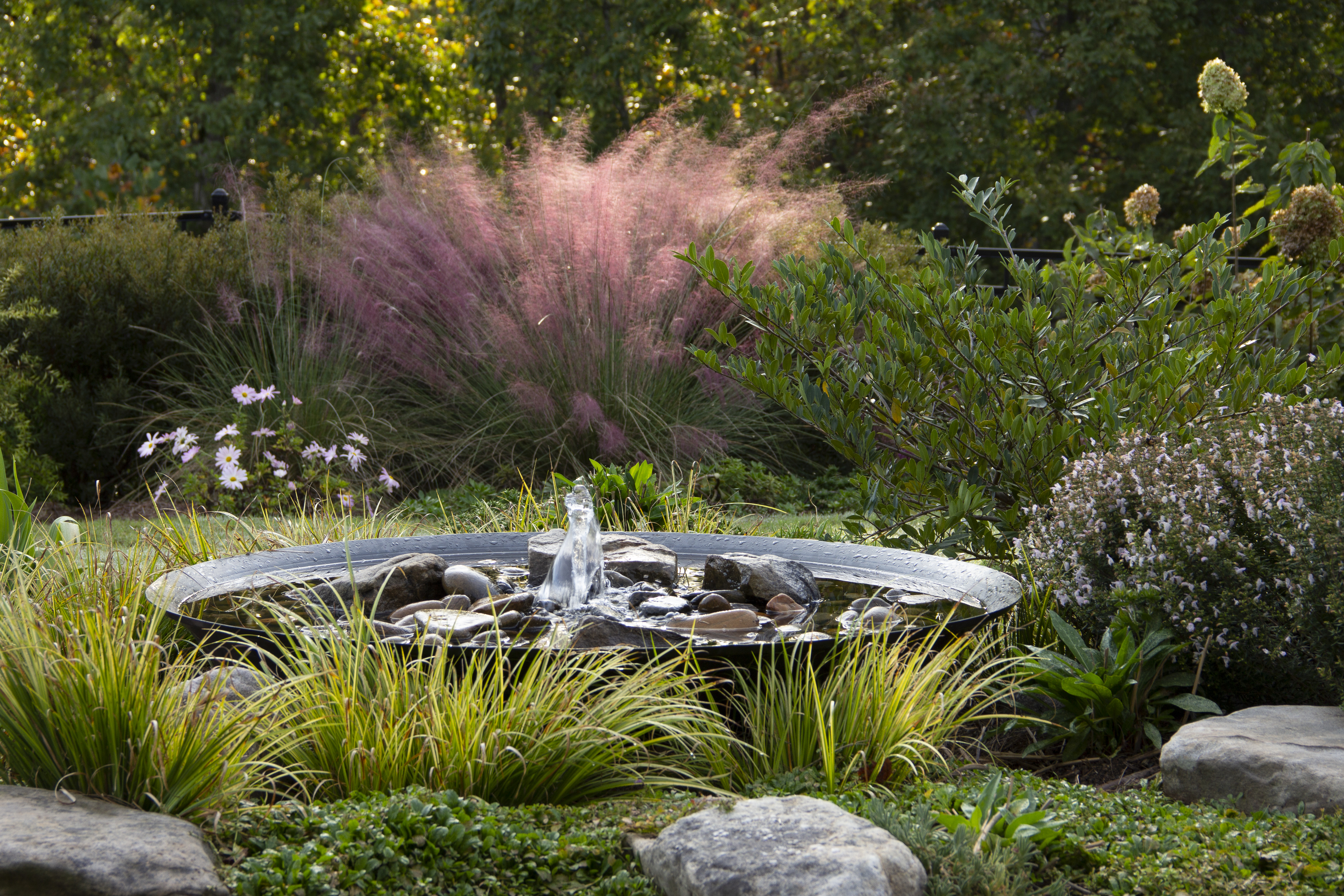 Top local Commercial landscaping maintenance companies near me - Backyard Landscaping Ideas IMG 3465