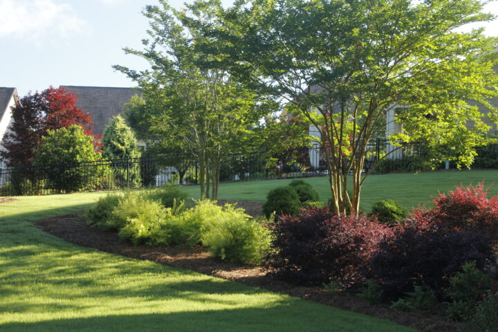 landscape design company near me - Outdoor Backyard landscaping Features IMG