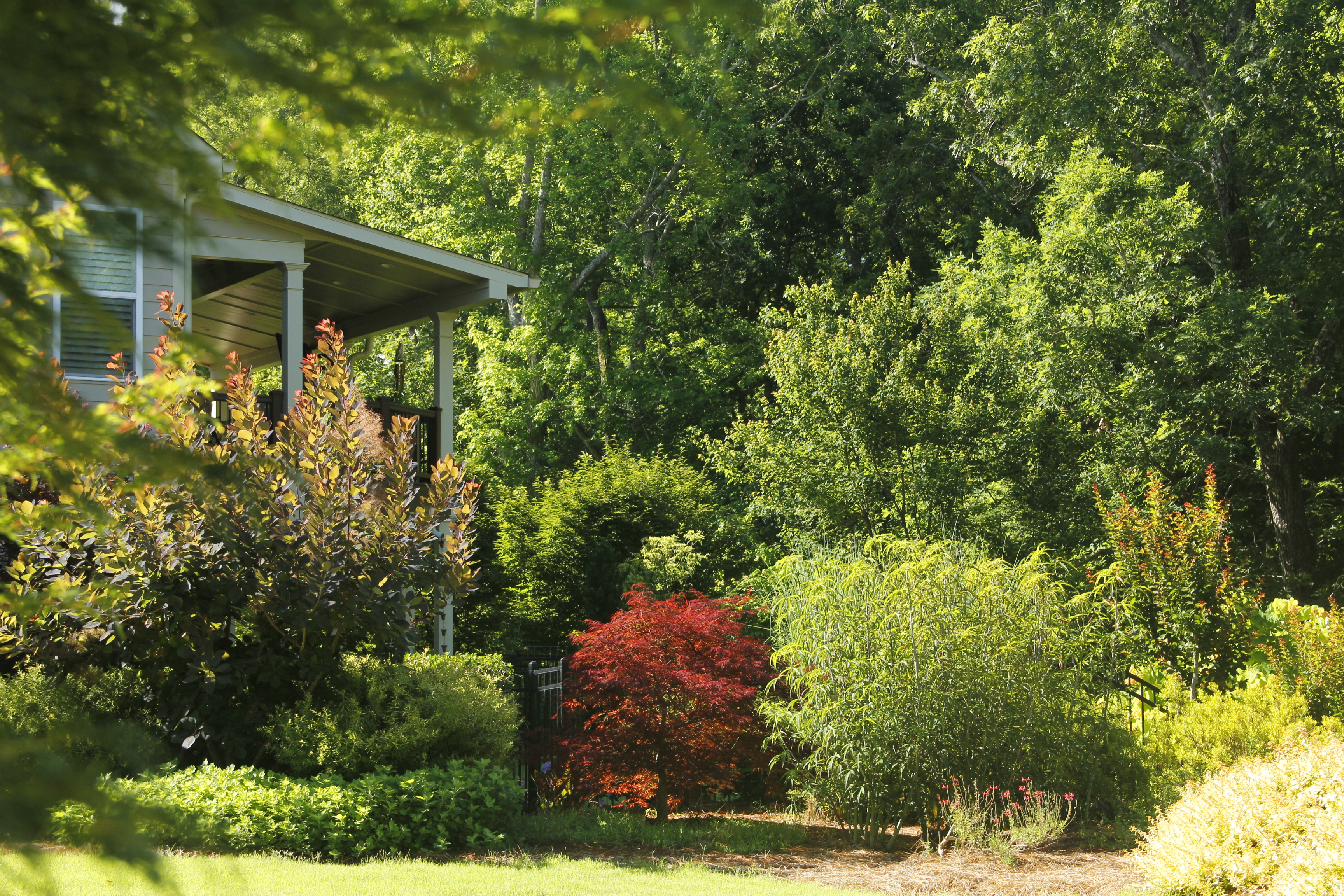 Top local Residential landscaping company near me - Back yard Landscaping IMG 8846