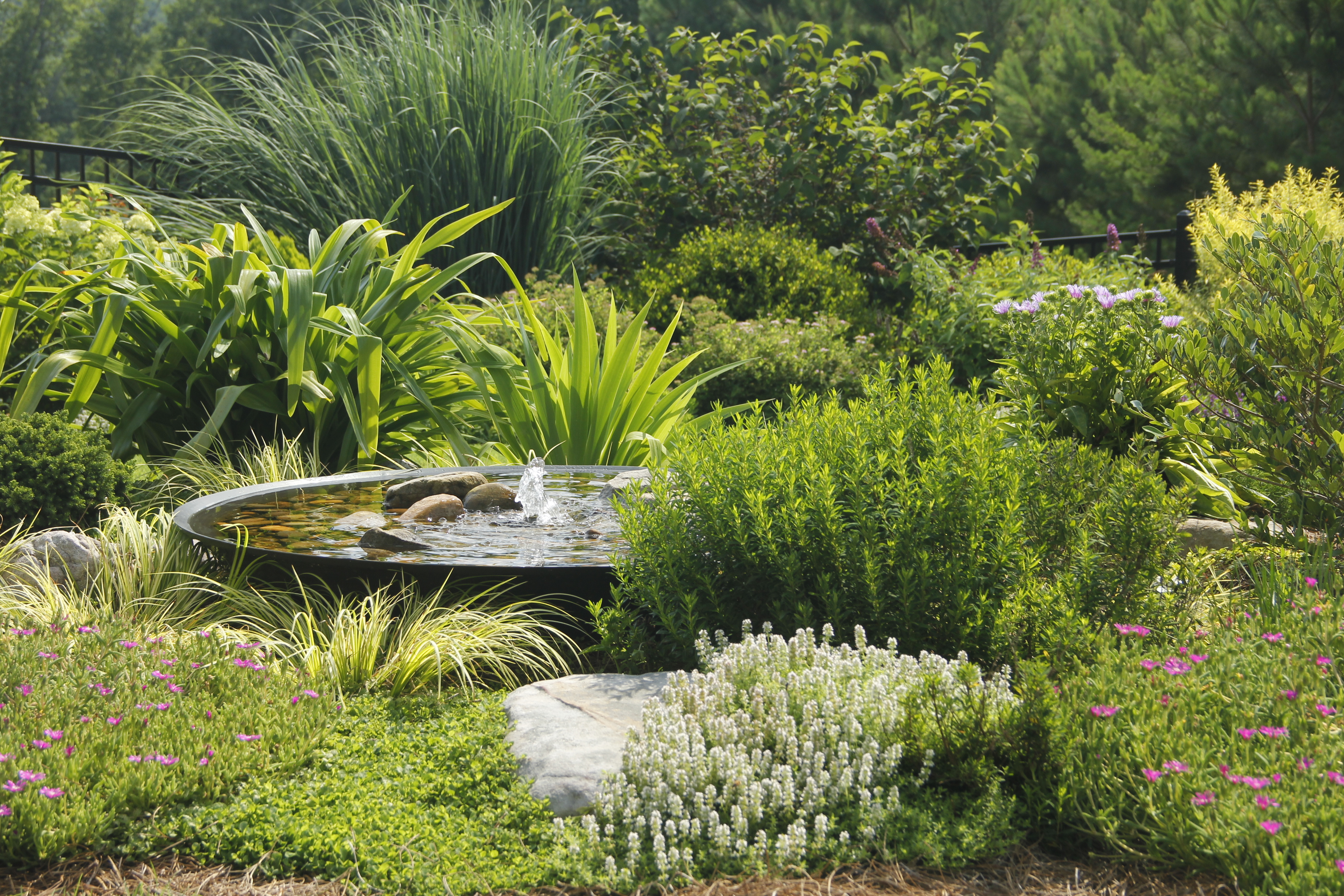 Top Residential landscaping Companies near me - Professional Landscaping Ideas IMG 0068