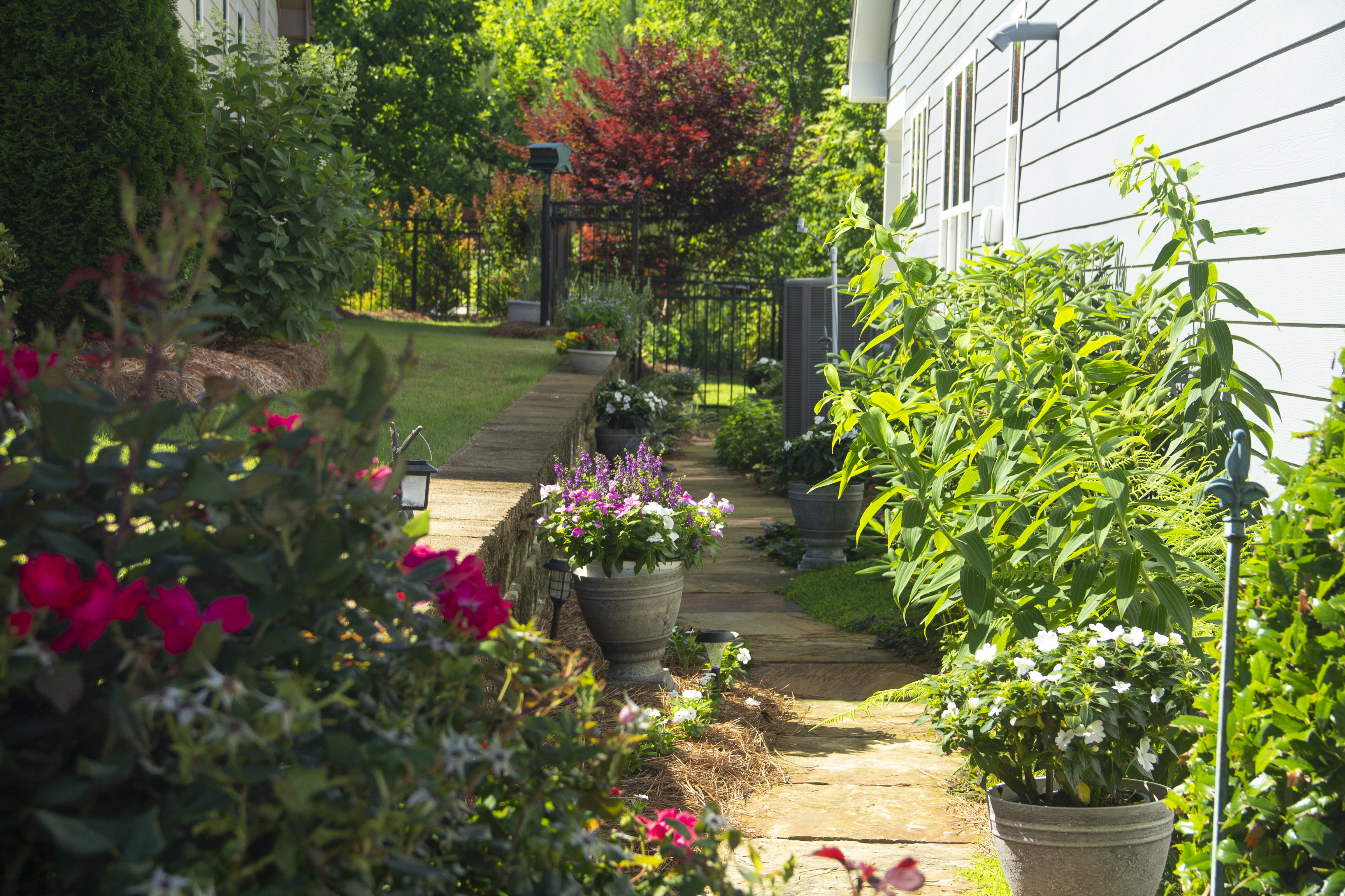 Top local Residential landscape designers near me - Backyard Landscaping Ideas IMG 8851