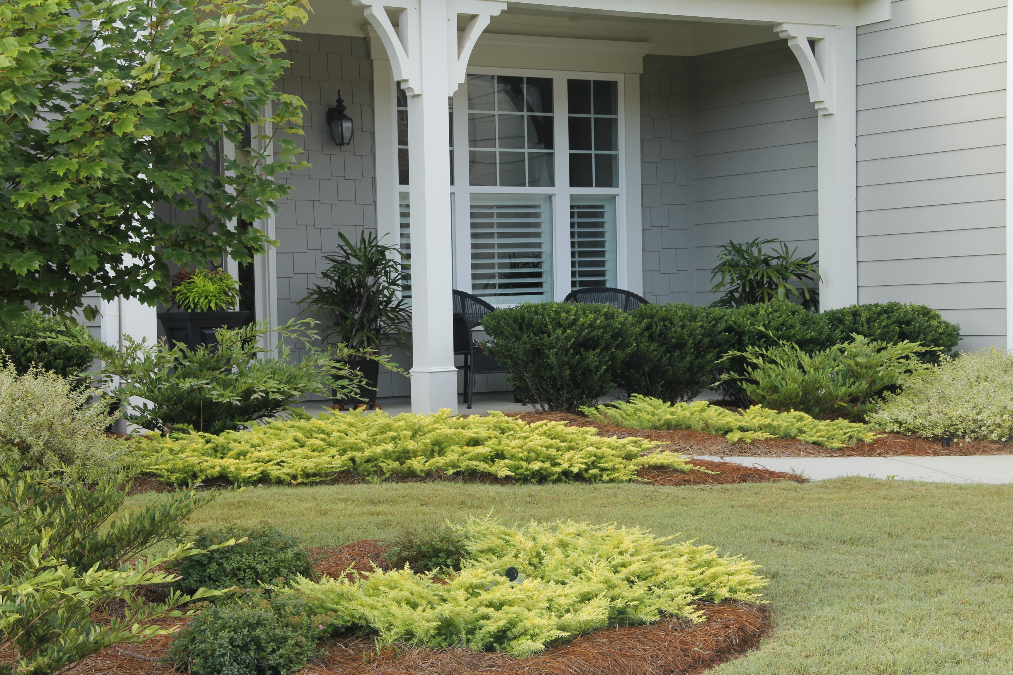Top local Residential landscaping maintenance companies near me - Front yard Landscaping Ideas IMG 9266
