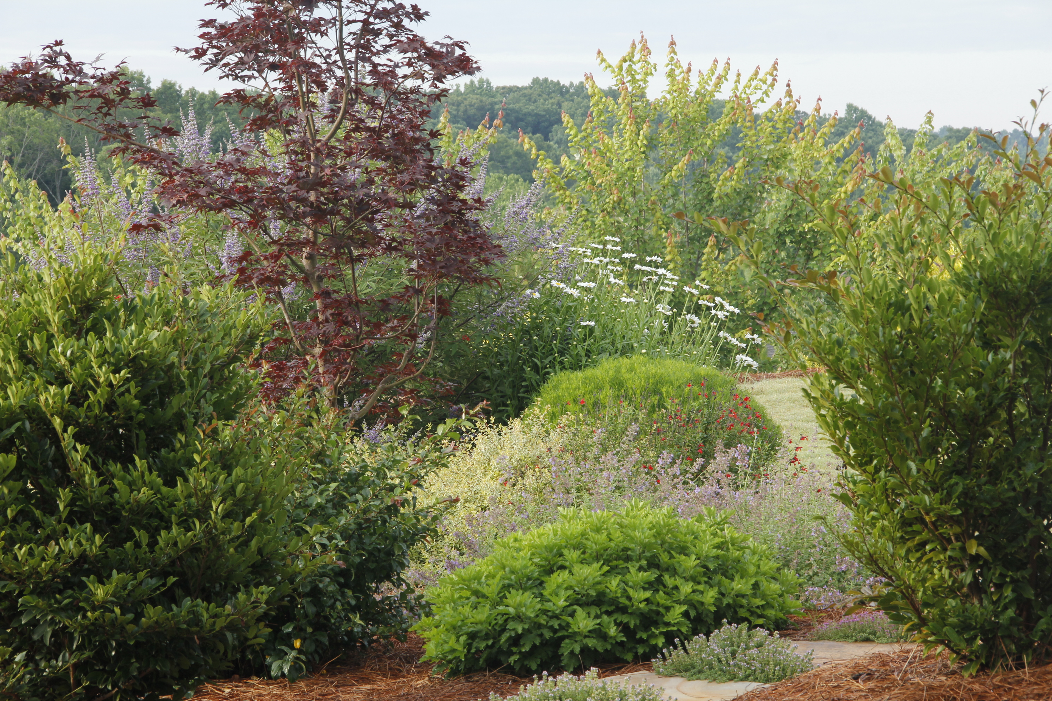 Top local Residential landscaping company near me - Modern Landscaping Design Rocks IMG