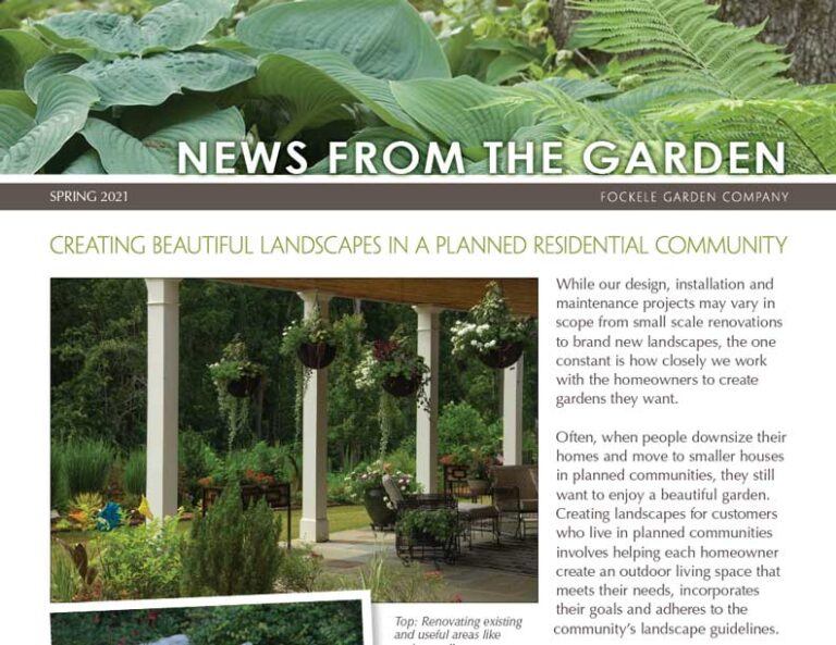 Local residential landscape design companies near me - Spring 2021 IMG